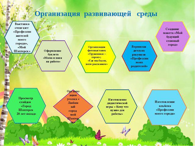 Организация развивающей среды Выставка стенгазет «Профессии жителей моего гор...
