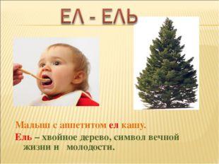 Малыш с аппетитом ел кашу. Ель – хвойное дерево, символ вечной жизни и молодо
