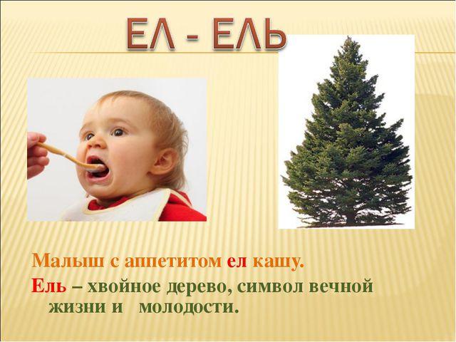 Малыш с аппетитом ел кашу. Ель – хвойное дерево, символ вечной жизни и молодо...