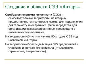Создание в области СЭЗ «Янтарь» Свободная экономическая зона (СЭЗ) – самостоя