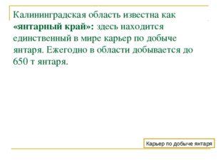 Калининградская область известна как «янтарный край»: здесь находится единств