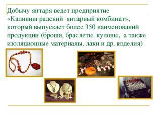 Добычу янтаря ведет предприятие «Калининградский янтарный комбинат», который