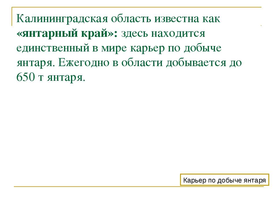 Калининградская область известна как «янтарный край»: здесь находится единств...