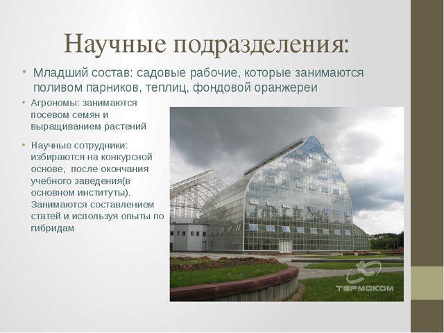 Научные подразделения: Агрономы: занимаются посевом семян и выращиванием раст...