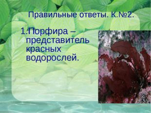 Правильные ответы. К.№2. 1.Порфира – представитель красных водорослей.