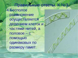 Правильные ответы. К.№3. 4.Бесполое размножение осуществляется делением клето