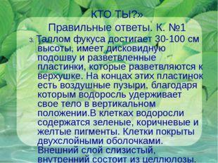 КТО ТЫ?» Правильные ответы. К. №1 3. Таллом фукуса достигает 30-100 см высоты