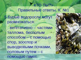 КТО ТЫ?» Правильные ответы. К. №1 5.Бурые водоросли могут размножаться: вегет