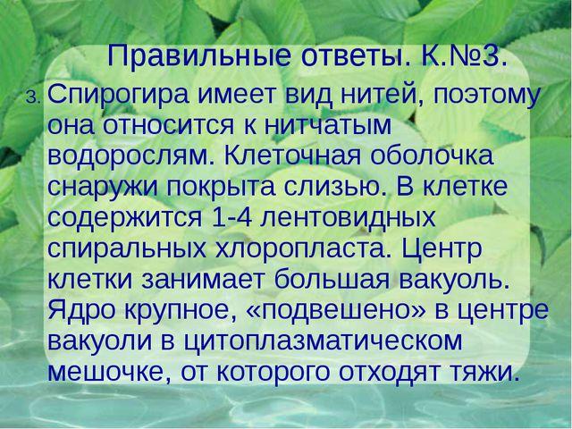 Правильные ответы. К.№3. 3. Спирогира имеет вид нитей, поэтому она относится...