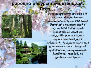 Леса покрывают свыше 66% страны. Флора Японии насчитывает более 700 видов де