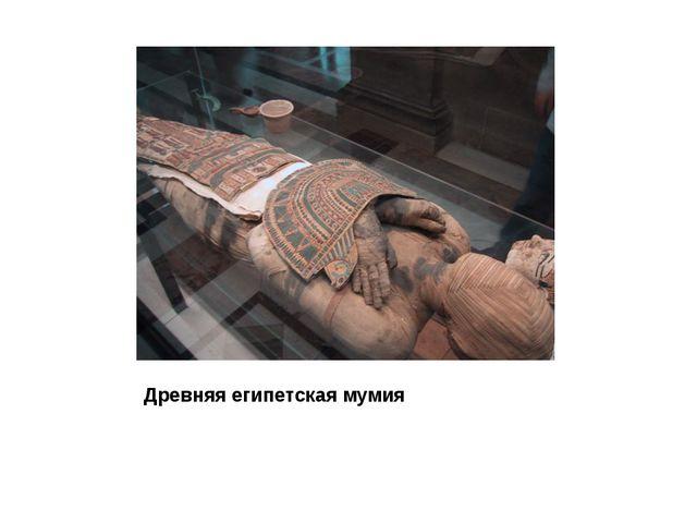 Древняя египетская мумия