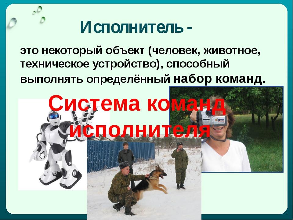 Исполнитель - это некоторый объект (человек, животное, техническое устройство...