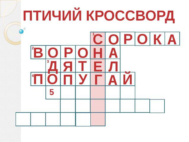 ПТИЧИЙ КРОССВОРД 1 С О Р О К А 2 О А Д Н О Р В 3 4 5 Й А Г У П О П Л Е Т Я