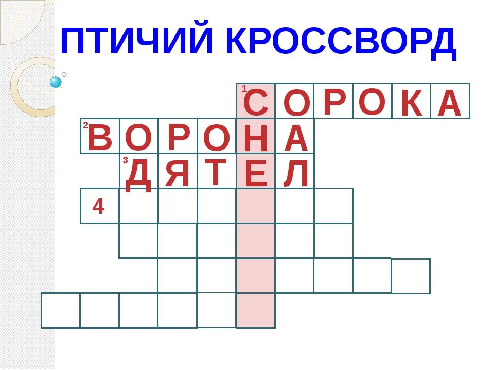 ПТИЧИЙ КРОССВОРД 1 С О Р О К А 2 О А Д Н О Р В 3 4 Л Е Т Я