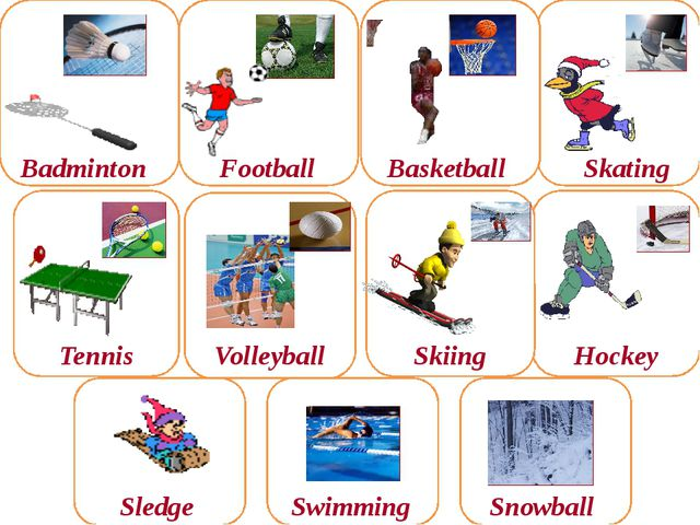 Hockey Skiing Badminton Football Tennis Volleyball Skating Basketball Sledge...