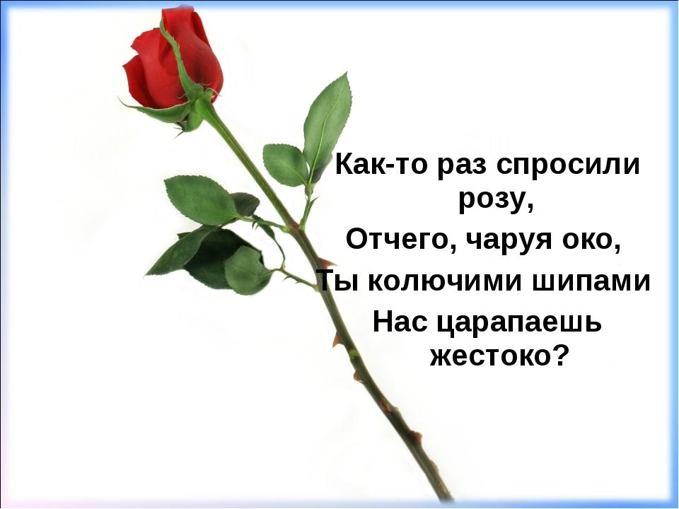 Как-то раз спросили розу, Отчего, чаруя око, Ты колючими шипами Нас царапаешь...