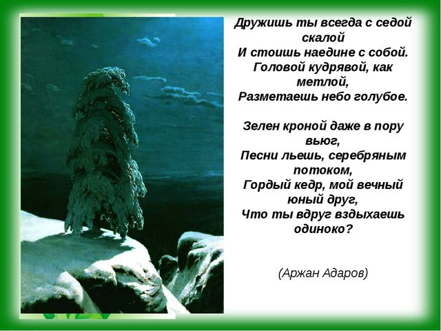 Дружишь ты всегда с седой скалой И стоишь наедине с собой. Головой кудрявой,...