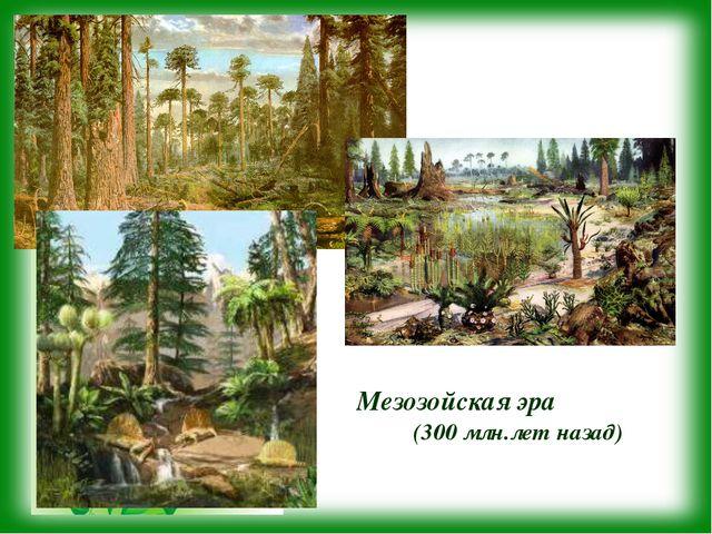 Мезозойская эра (300 млн.лет назад)