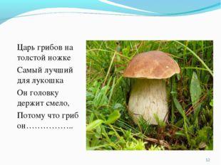 Царь грибов на толстой ножке Самый лучший для лукошка Он головку держит смело