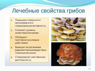Лечебные свойства грибов *