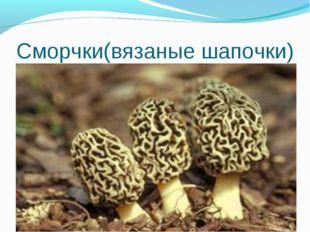 Сморчки(вязаные шапочки) *