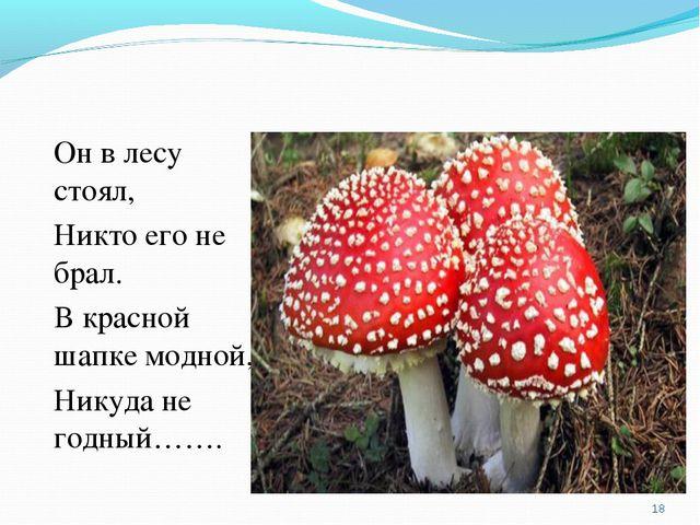 Он в лесу стоял, Никто его не брал. В красной шапке модной, Никуда не годный…...