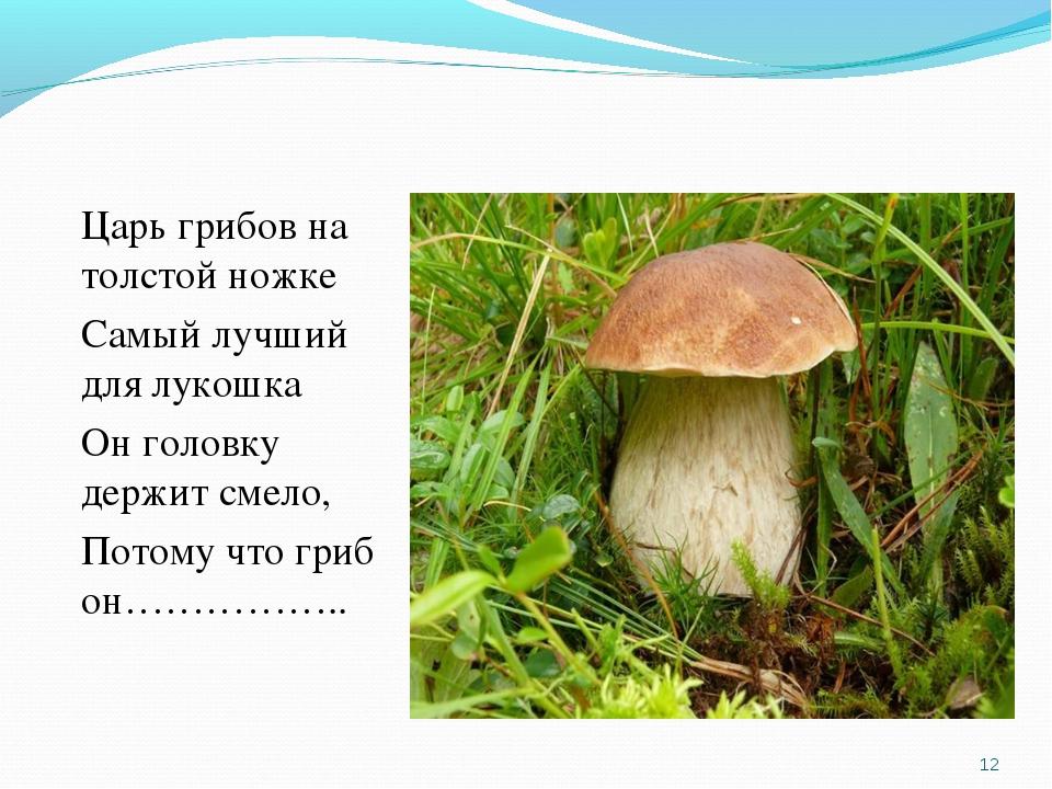 Царь грибов на толстой ножке Самый лучший для лукошка Он головку держит смело...