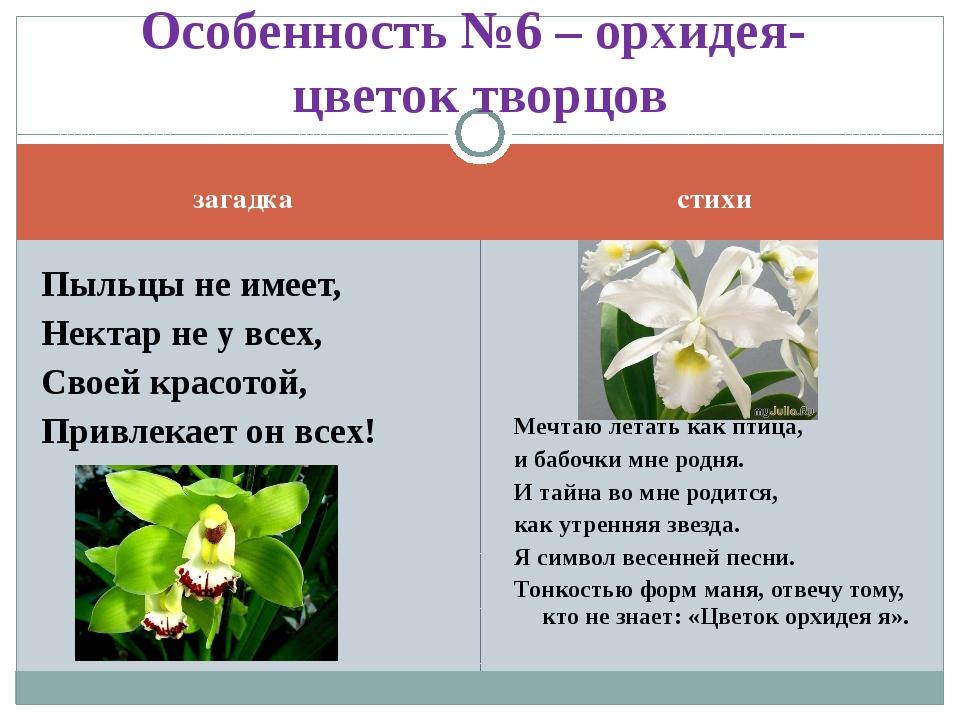 загадка стихи Пыльцы не имеет, Нектар не у всех, Своей красотой, Привлекает о...