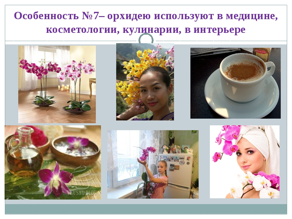 Особенность №7– орхидею используют в медицине, косметологии, кулинарии, в инт...