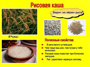 В рисе много углеводов. Чем чаще ешь рис, тем лучше у тебя интеллект. Рисова