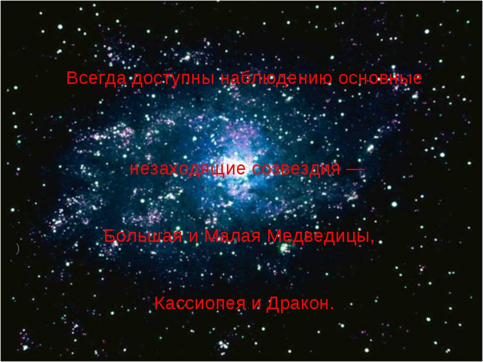 ) Всегда доступны наблюдению основные незаходящие созвездия — Большая и Мала...