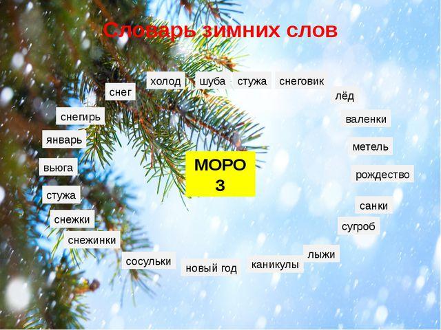 Словарь зимних слов МОРОЗ снег холод снеговик лёд санки сугроб лыжи новый год...