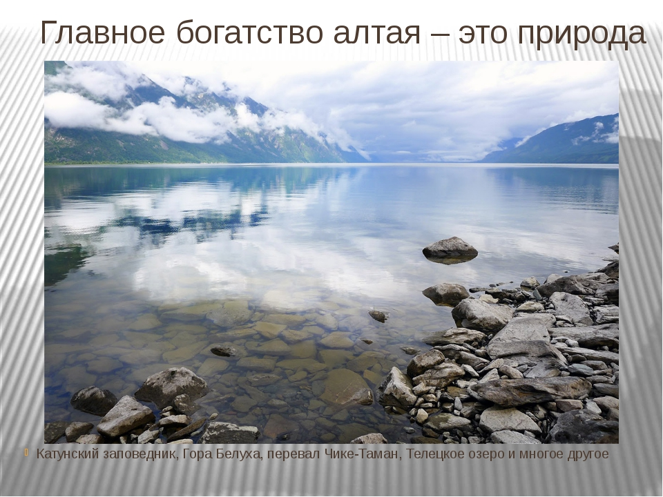 Главное богатство алтая – это природа Катунский заповедник, Гора Белуха, пере...