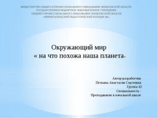 Автор-разработчик Петкина Анастасия Сергеевна Группа 42 Специальность : Препо