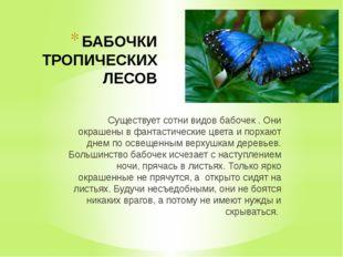 БАБОЧКИ ТРОПИЧЕСКИХ ЛЕСОВ Существует сотни видов бабочек . Они окрашены в фан