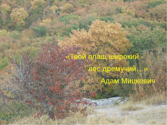 «Твой плащ широкий - лес дремучий…» Адам Мицкевич