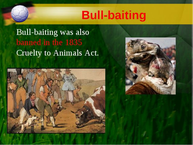 Bull-baiting Bull-baiting was also banned in the 1835 Cruelty to Animals Act.