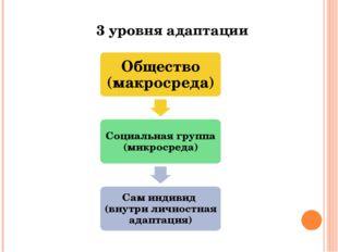 3 уровня адаптации