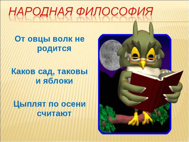 От овцы волк не родится Каков сад, таковы и яблоки Цыплят по осени считают