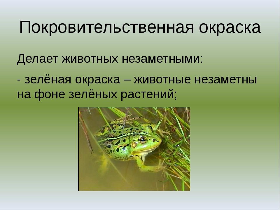 Покровительственная окраска Делает животных незаметными: - зелёная окраска –...