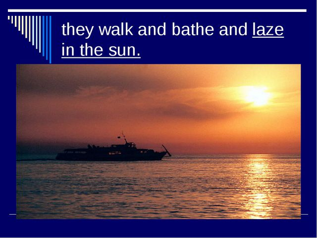 they walk and bathe and laze in the sun.