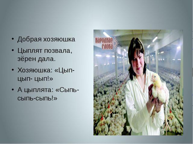 Добрая хозяюшка Цыплят позвала, зёрен дала. Хозяюшка: «Цып- цып- цып!» А цып...