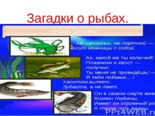 Загадки о рыбах.