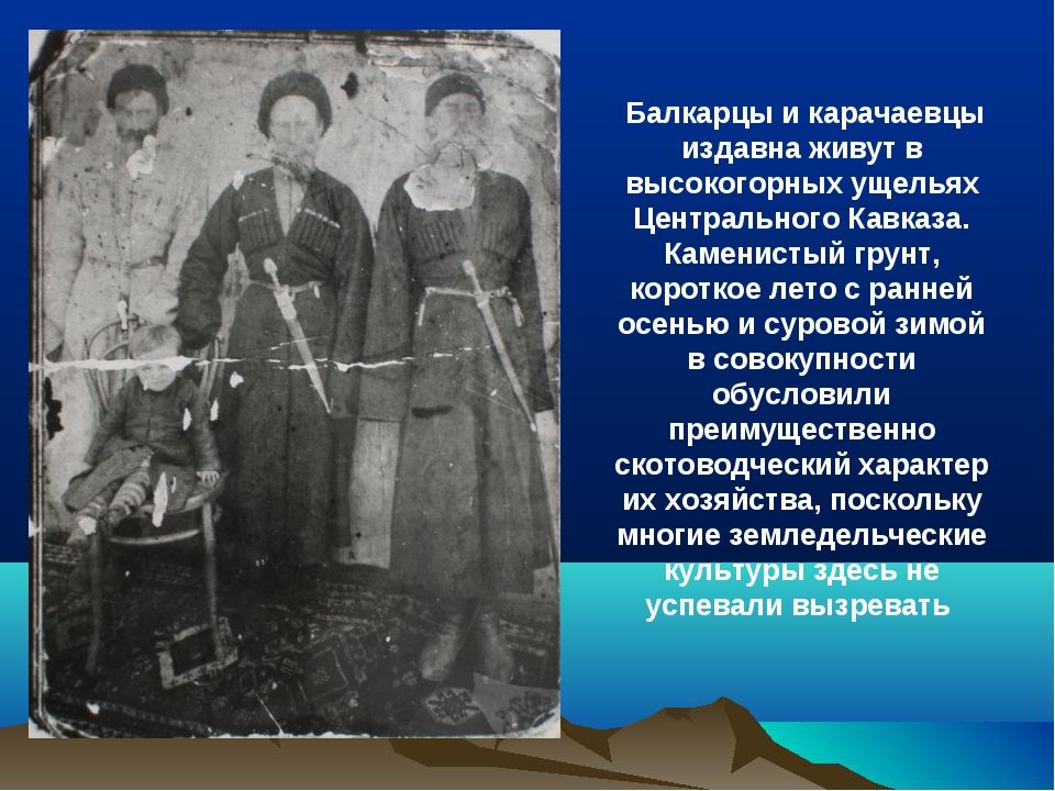Балкарцы и карачаевцы издавна живут в высокогорных ущельях Центрального Кавк...