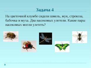 Задача 4 На цветочной клумбе сидели шмель, жук, стрекоза, бабочка и муха. Два