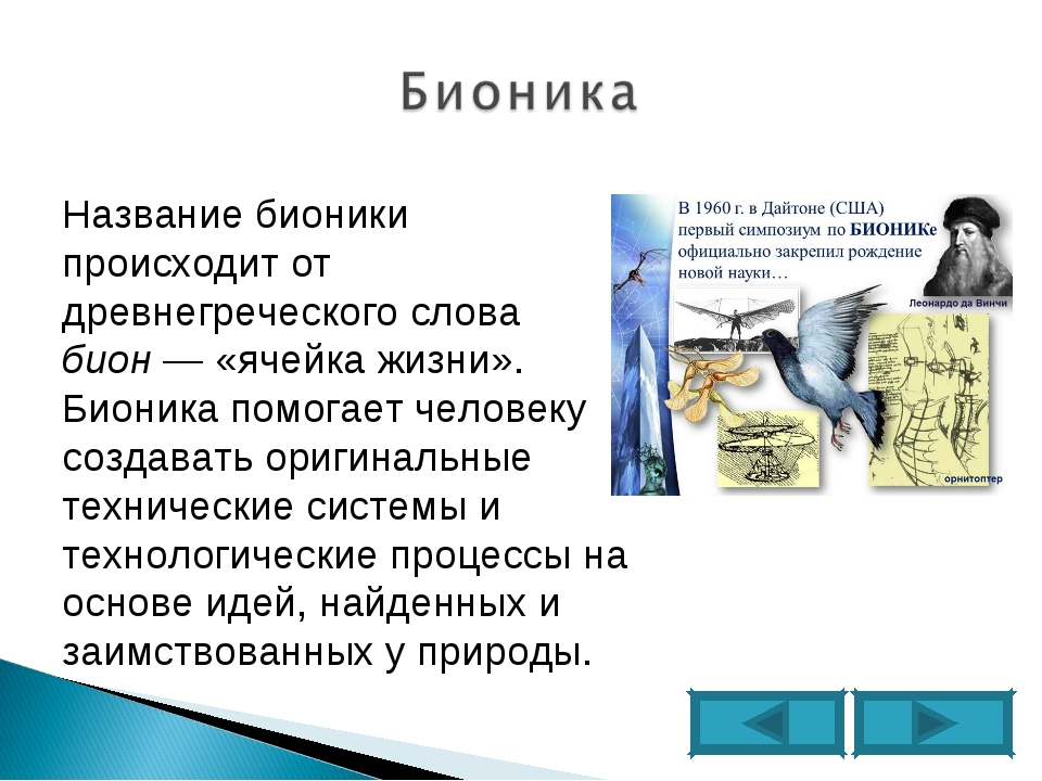 Название бионики происходит от древнегреческого слова бион— «ячейка жизни»....