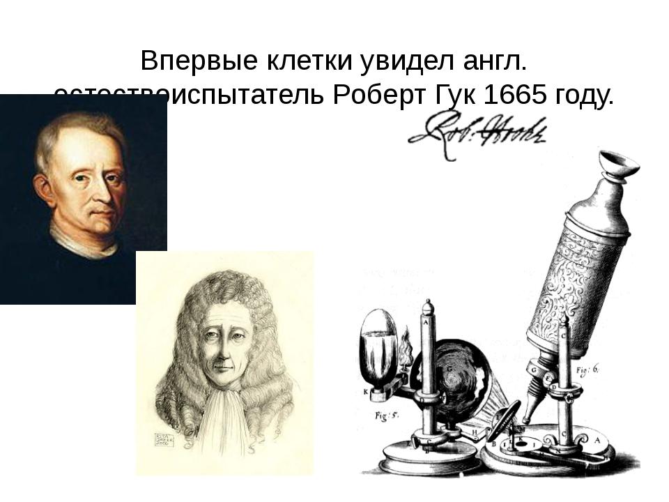 Впервые клетки увидел англ. естествоиспытатель Роберт Гук 1665 году.