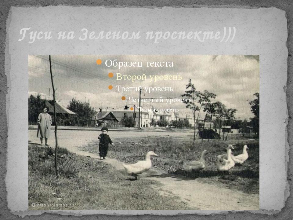 Гуси на Зеленом проспекте)))