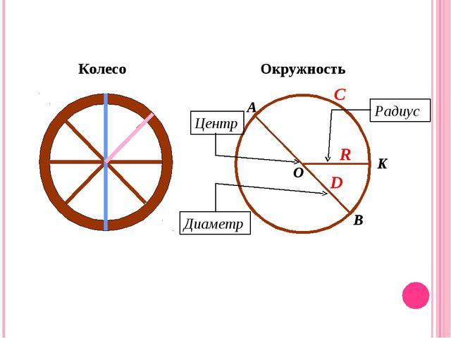O Колесо Окружность Центр Радиус Диаметр A B K D R C
