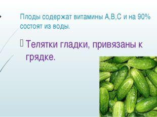 Плоды содержат витамины А,В,С и на 90% состоят из воды. Телятки гладки, привя